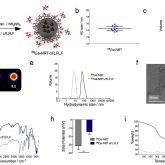 PET/MR nanoparticles